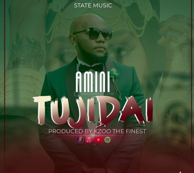 AUDIO: Amini – Tujidai Mp3 Download