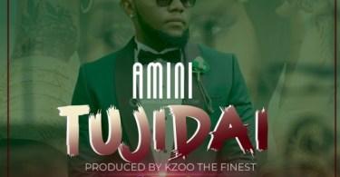 AUDIO: Amini – Tujidai Mp3 Download