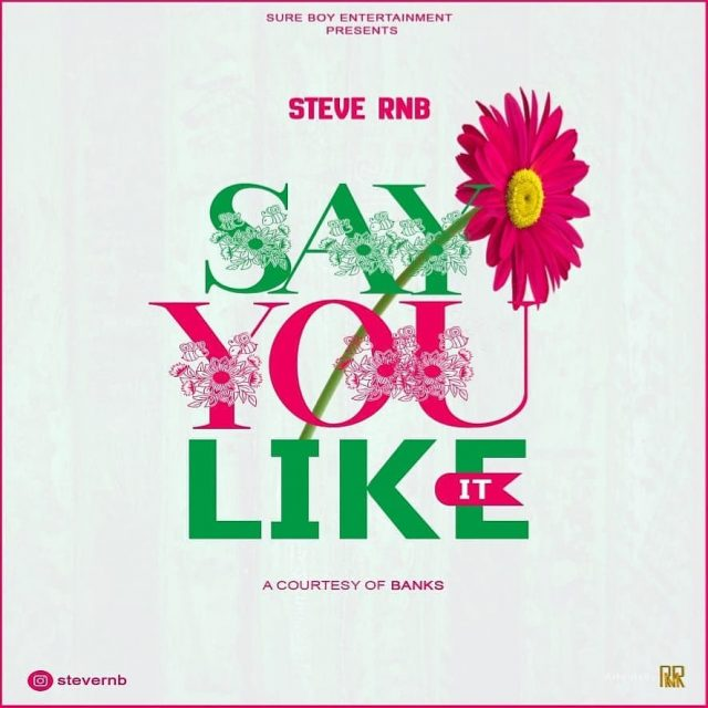 AUDIO: Steve RnB – SAY YOU LIKE IT Mp3 Download