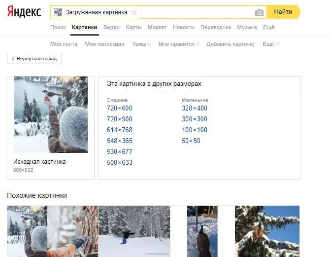 Как сделать поиск по фотографии в интернете