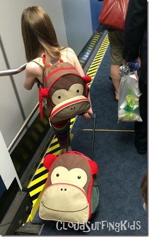 Heavy-Work-Backpack