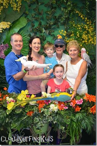 Charlotte Amalie Skyride Birds