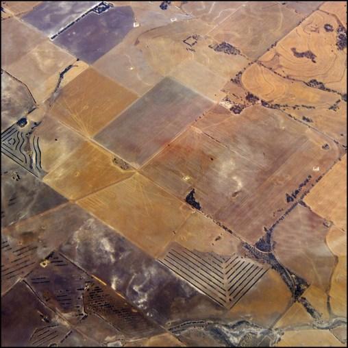 Wheatbelt fields1