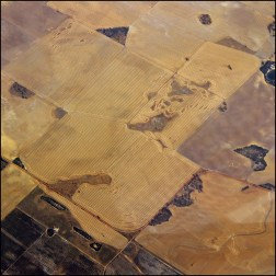 Wheatbelt fields2