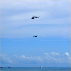 The two news helicopters following the shark