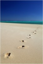 Sandy Bay footsteps_2
