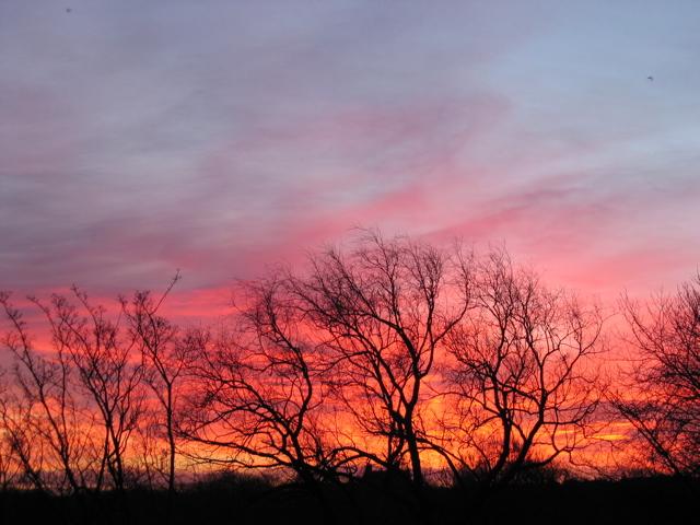 sunrises1
