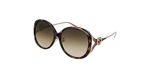 Gucci HAVANA / BROWN GOLD Sunglasses