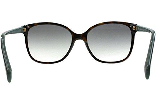6c7d9575f2c70 Home   Shop   Women   Accessories   Sunglasses   Eyewear   Prada Havana  Brown Gradient Polarized Sunglasses
