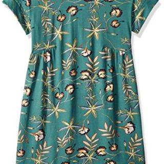 Roxy Big Girls' Dripping Rose Short Sleeve Dress, Trellis Bird Flower Youth, 8/S