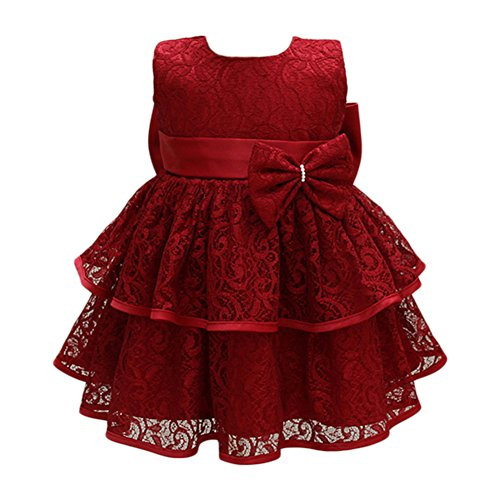 Glamulice Baby Girls Tulle Lace Princess Party Dresses