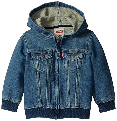 Levi's Baby Boys Hoodie, Waverly 12 Months