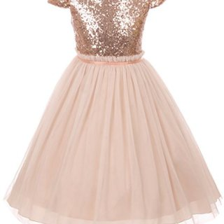 Big Girls' Sequin Tulle Cap Sleeve Bridesmaid Party Birthday Flower Girl Dress