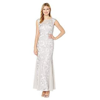Alex Evenings Women's Embroidered Dress with Illusion Neckline