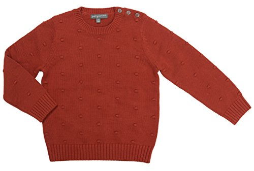 Pompomme Baby Boy's Burnt Orange textured sweater