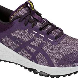 ASICS Women's Alpine XT Running Shoe, Astral/Night Shade