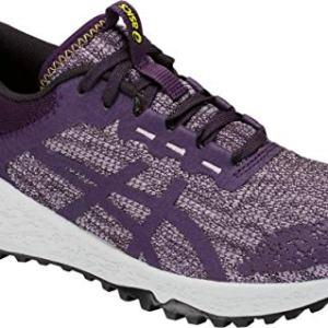 ASICS Women's Alpine XT Running Shoe, Astral/Night Shade