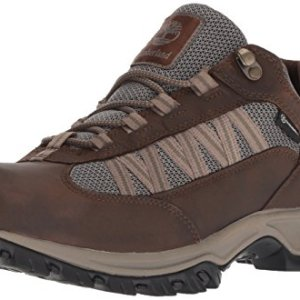 Timberland Men's Mt. Maddsen Lite Low WP, Dark Brown