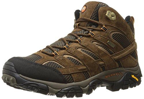 Merrell Men's Moab 2 Mid Waterproof Hiking Boot, Earth