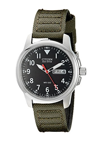Citizen Men's Eco-Drive Stainless Steel Watch with Day/Date display