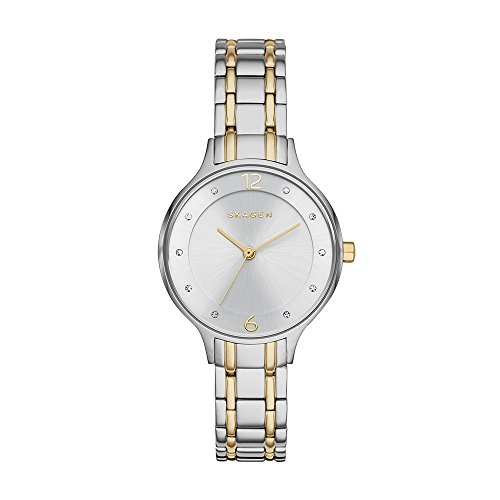 Skagen Women's Anita Quartz Two-Tone Stainless Steel Casual Watch
