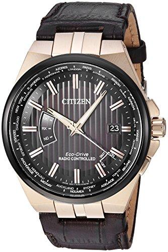 Citizen Men's World Perpetual A-T Brown Strap Watch