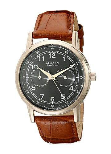 Citizen Men's Eco-Drive Rose-Gold Stainless Steel Watch