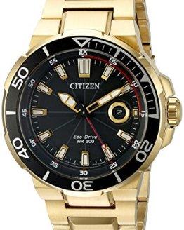 Citizen Eco-Drive Men's AW1422-50E Endeavor Gold Watch