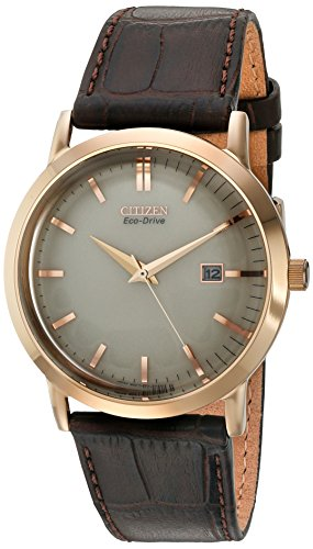 Citizen Eco-Drive Steel Watch with Date