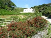 Views Of Lundy (23)