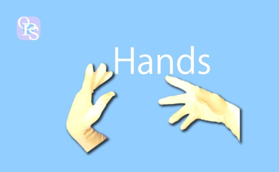 手の表現-ヘッダー