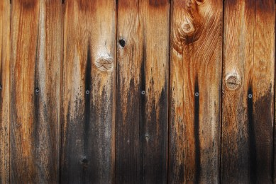 Fence Wood Treated and Worn