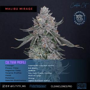 Malibu Mirage