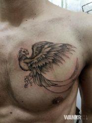 Galerie tattoo