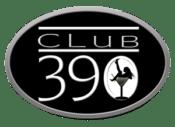 390-Logo-Silver-Oval