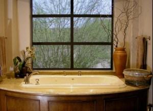 bathtub w view