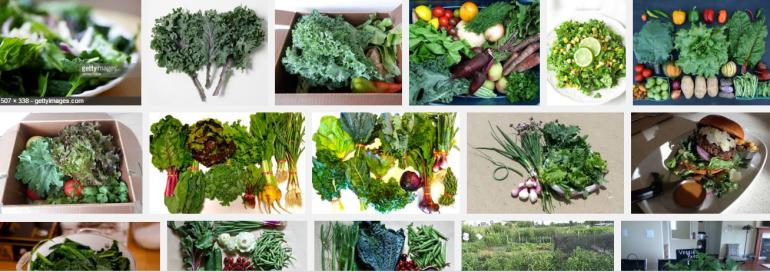 red kale onions lettuce