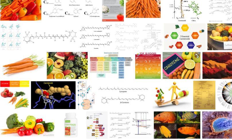 carotenoid.JPG