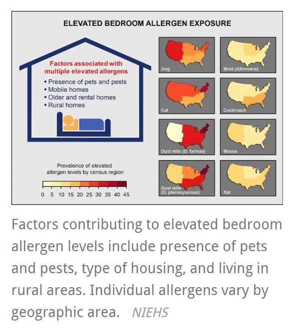 allergens.JPG