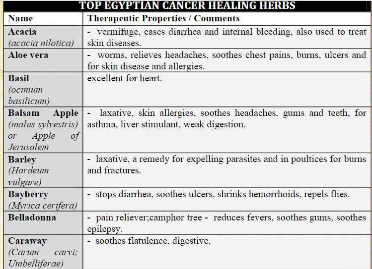 egyptian herb 1