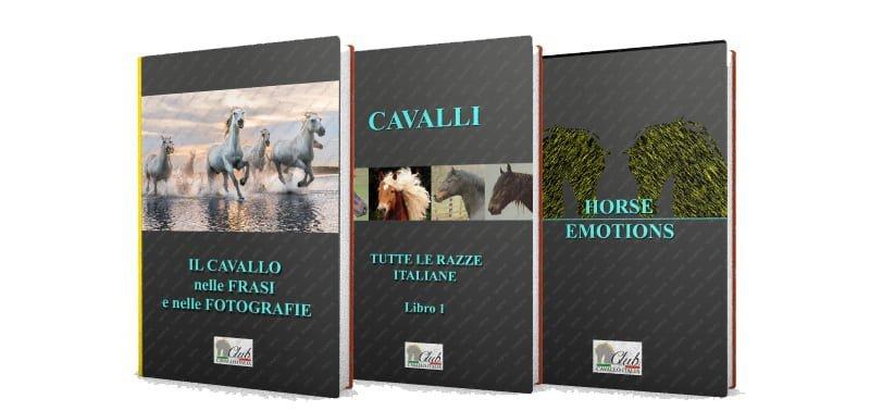 Libri sui cavalli