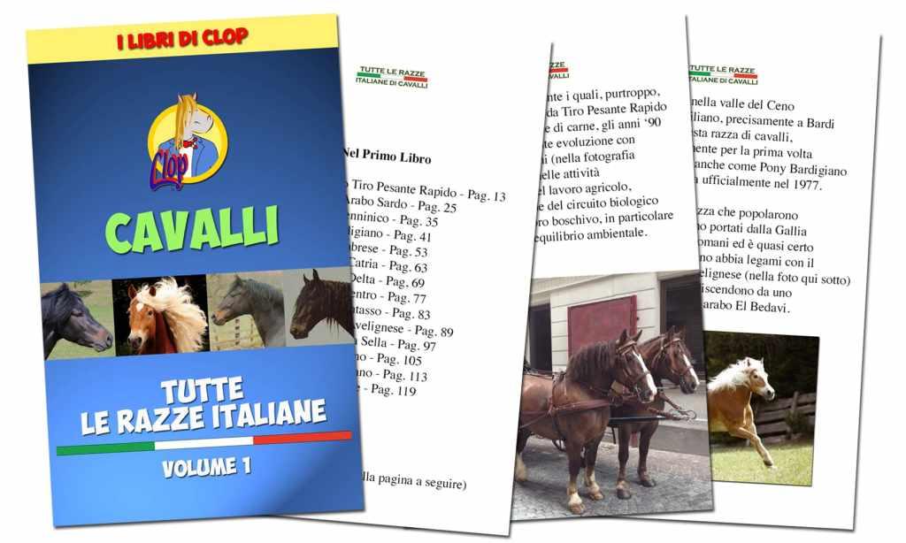 Tutte le razze italiane di cavalli