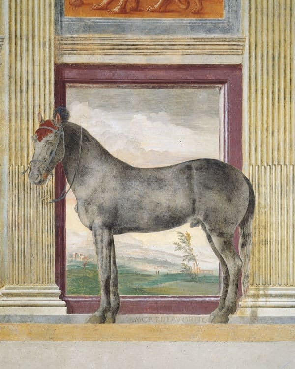 Hall of the Horses at Palazzo Te