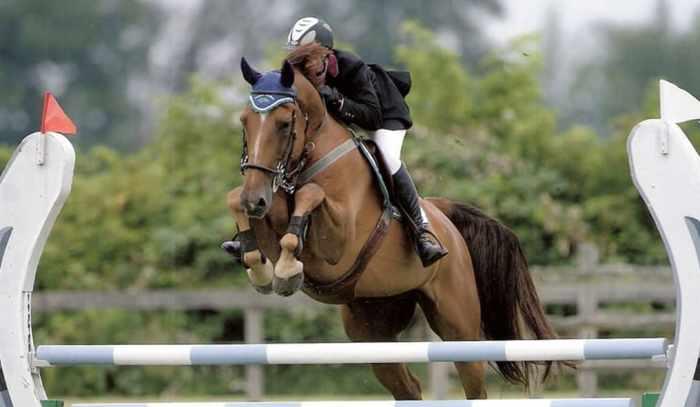 Horse Jumping Bracelet 7