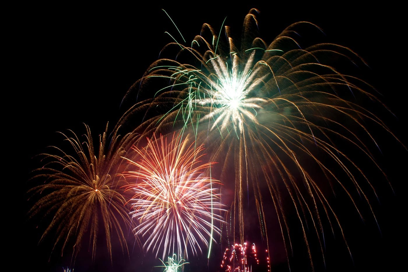 Orange Park And Jacksonville New Year S Eve Events