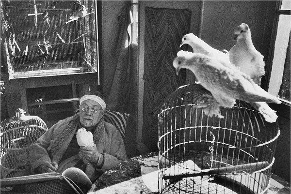 Henri Cartier Bresson matisse