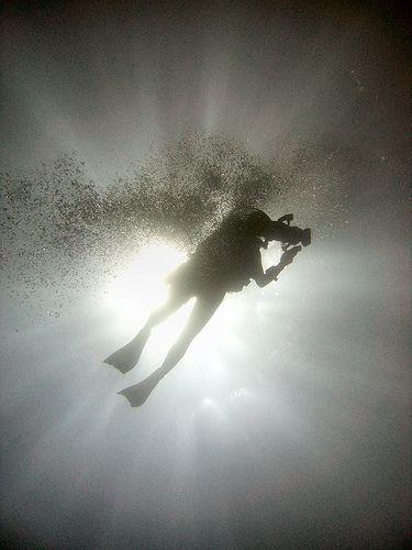 CIMG2167 Diver Silhouette, por Tim Sheerman-Chase