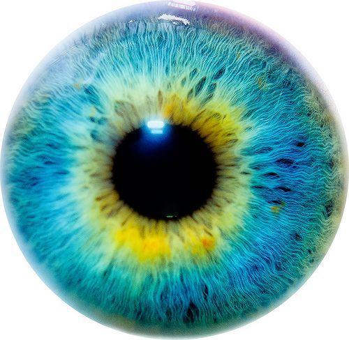 10 Eye I, por Thomas Tolkien