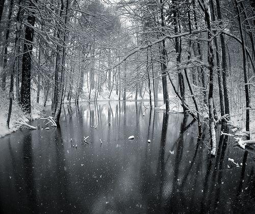 Snow Day, por evoo73
