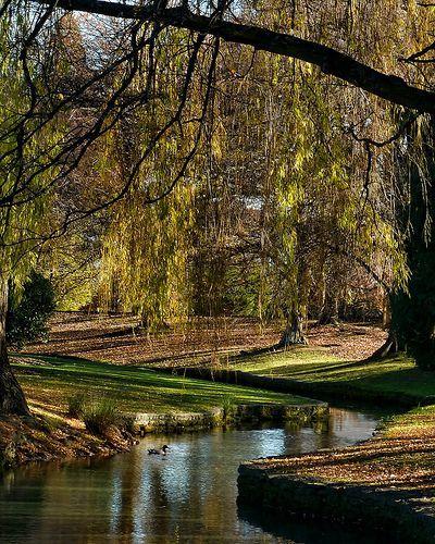 Autumn Scene at Pollard Park, por SidPix